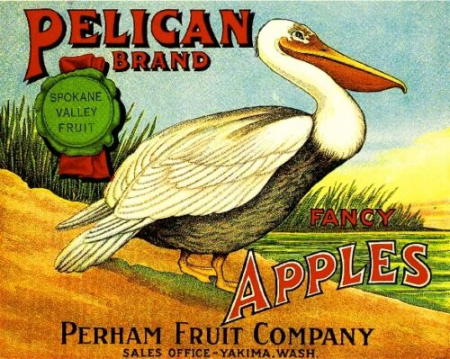 Yakima Washington Pelican Bird Apple Fruit Crate Label Art Print