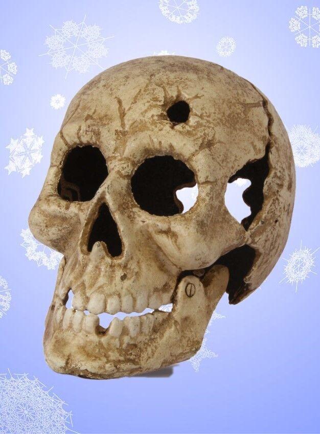 Halloween altweiß Gusseisen Kopfschuss Totenkopf Teelicht Teelicht Teelicht ausgefallen Geschenk   Online Kaufen  98af03