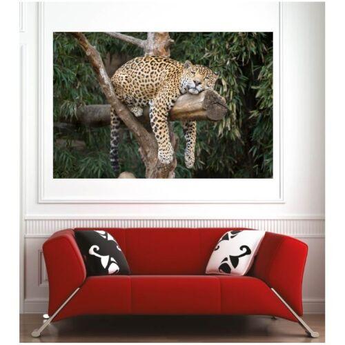 Affiche poster léopard  9724333 Art déco Stickers