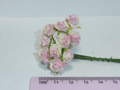 Jardín 1:12 escala 10 Rosas R6 Casa De Muñecas Miniaturas Flores