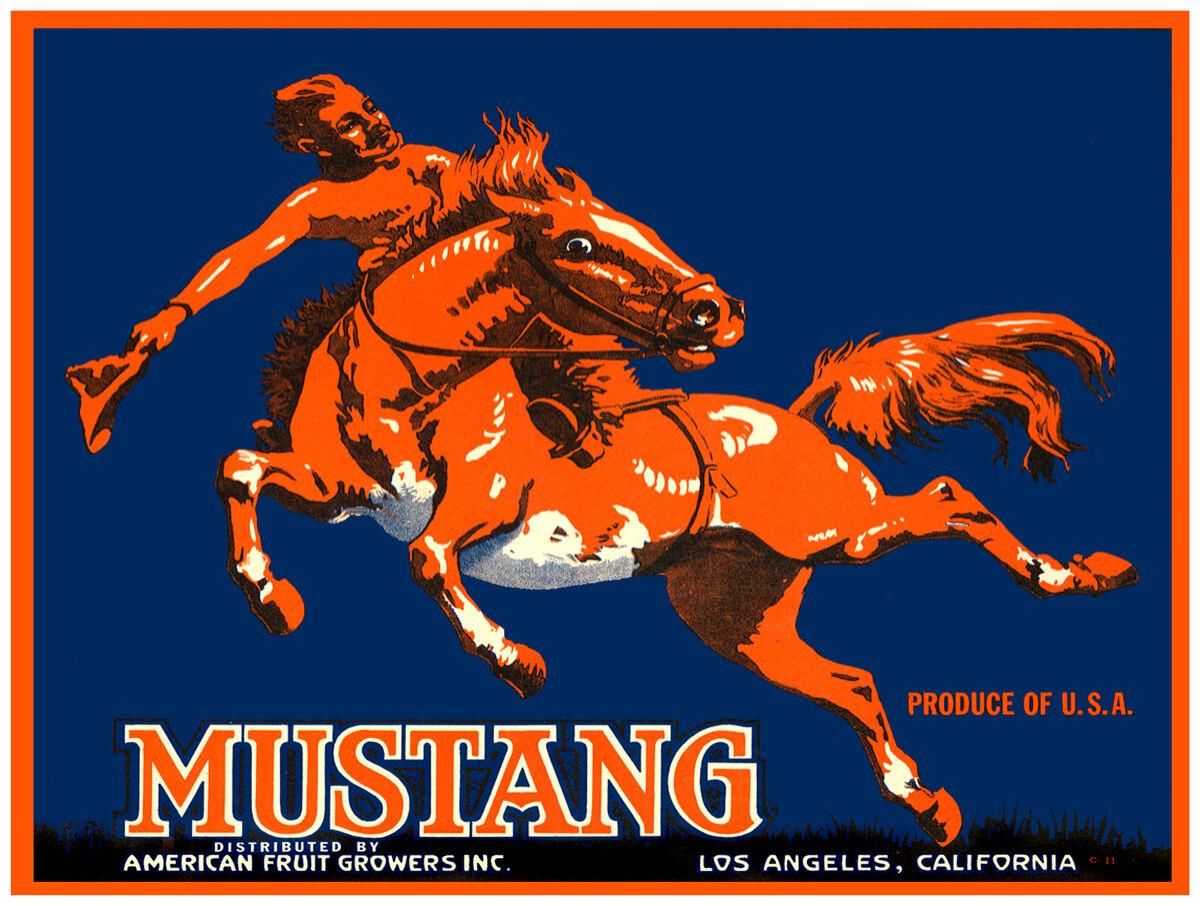 16x20 Decoration CANVAS.Interior room design art.Mustang horse.rot.6426