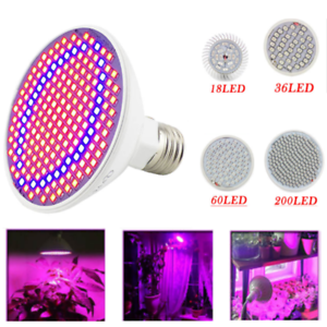 18-36-60-200-LED-Grow-Light-Lamp-bulbs-E27-Room-Plant-Indoor-Seeds-Hydroponics