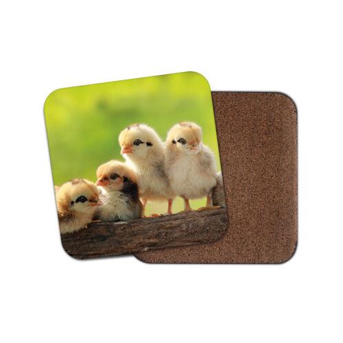 Cute Chicks Coaster-Poussin bird Easter FARM Maman Tata Gran Cadeau #14955