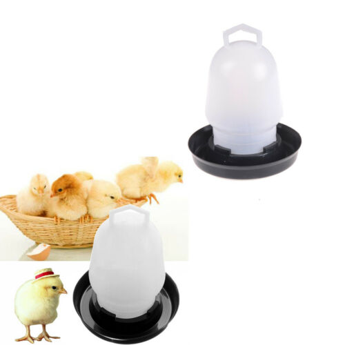 Automatic Pet Feeder Chicken Quail Poultry Bird Pheasant Feed Water Tool EL