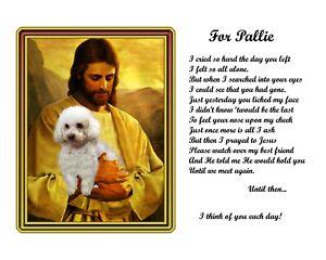 Bichon-Frise-Dog-Memorial-w-Jesus-Poem-Personalized-w-Dog-039-s-Name-Pet-Loss-Gift2