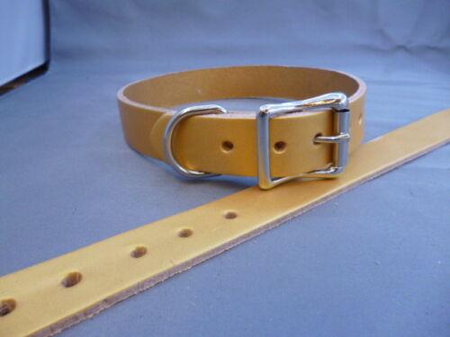 Collar de Perro de Cuero Real de oro 1 pulgadas 25mm W8