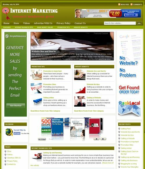 INTERNET MARKETING GUIDE - NICHE WEBSITE WITH INTEGRATED STORE