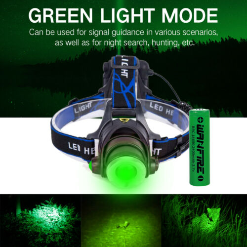 Details about  /Red//Green//UV Rechargeable LED Light Headlamp Zoom Head Light Focus Headlight