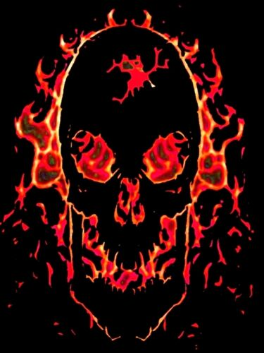 EVIL FIRE AND FLAME TRIBAL SKULL DESIGN A4 IRON ON TRANSFER 11X8 GOTHIC DESIGN