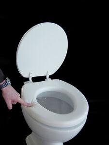 soft wc sitz lugano wei gepolstert neu toilettendeckel klodeckel deckel weiss ebay. Black Bedroom Furniture Sets. Home Design Ideas