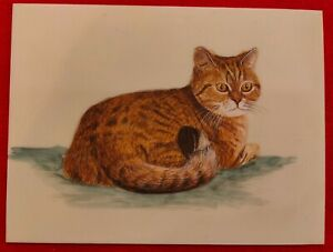 Hand-Painted-Cat-Animal-Miniature-Painting-India-Art-on-Synthetic-Ivory-Faux