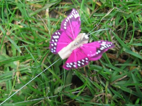 Speckled Wings Set of 2 Tiny Cerise Feather Butterflies 3.0cm