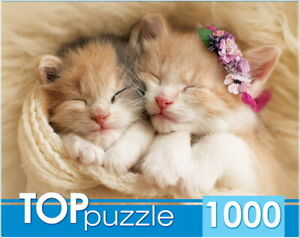 "Puzzles 1000 pieces 68.5*48.5cm ""Two sleeping kittens"". Red Cat ГИТП1000-2142."