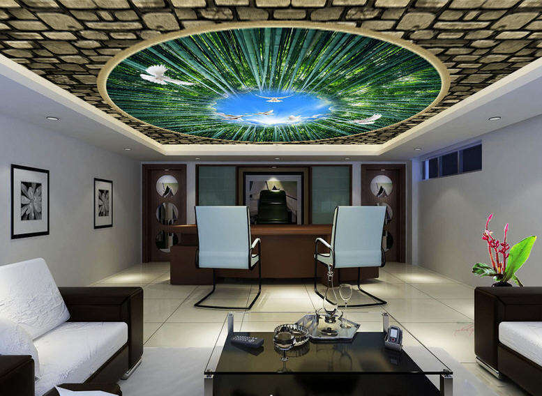 Flying To Freedom Full Wall Mural Photo Wallpaper Print 3D Ceiling Decor Home