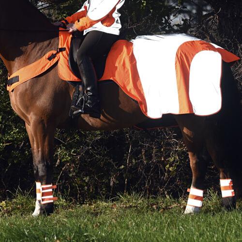 Details about  /Equisafety Mercury Unisex Safety Wear Reflective Exercise Sheet Red Orange