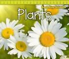 Plants by Rebecca Rissman (Hardback, 2013)