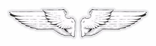 Wings Sticker for Laptop Tablet Hard Hat Bumper Helmet Bike Door Truck PC #03