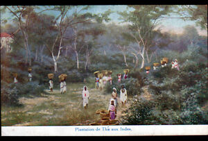INDE-PLANTATION-du-THE-Publicite-034-THES-DES-INDES-034