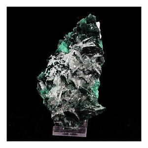 Malachite-Baryte-2144-0-ct-Milpillas-Mine-Sonora-Mexique