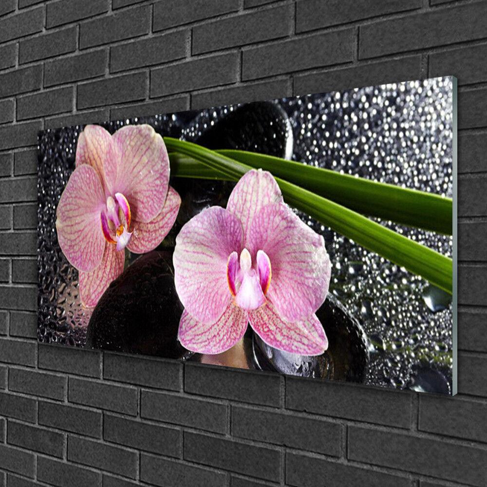 Tableau sur verre Image Impression 100x50 Floral Fleurs Souches