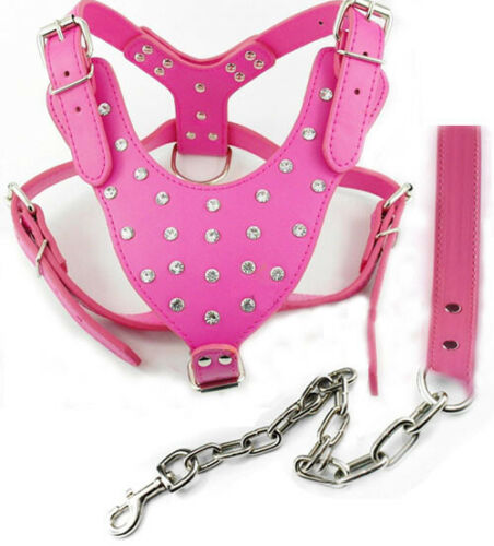 "NEW Rhinestone Leather Dog Harness Leash for Pitbull Mastiff Chest for 26-34/"""