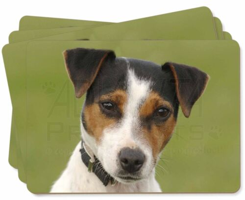 Jack Russell Terrier Dog Picture Placemats in Gift Box, ADJR57P