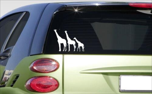 """sticker *E981* decal cute laptop giraffes zoo africa 8.5/""""X5/"""" Giraffe family"""