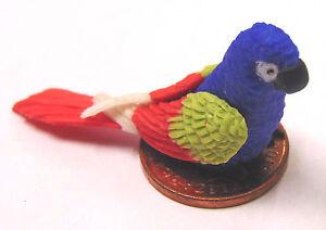 1:12 Scala Grande Non Verniciata Polymer Clay Pappagallo Tumdee Dolls Casa Bird