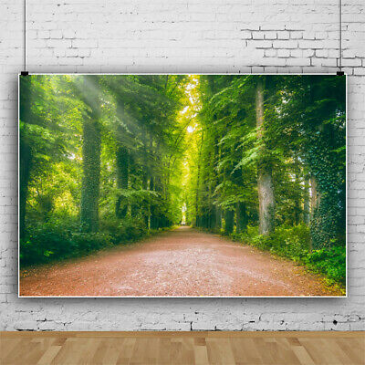 15x10ft Background Forest Road Photography Backdrop Morning Exercise Photo Shooting Props XCFU426