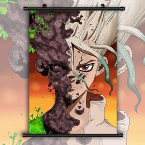 Dr Stone Ishigami Senku HD Canvas Print Wall Poster Scroll Room Decor