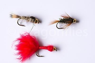 4 Size Assortment 12,14,16,18 Copper John Red Nymph with Bead Head One Dozen Wet Flies 3 of Each Size Fly Fishing Trout Flies