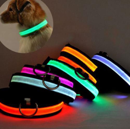 USB Rechargable LED Dog Pet Collar Flashing Luminous Safety Light Up Nylon