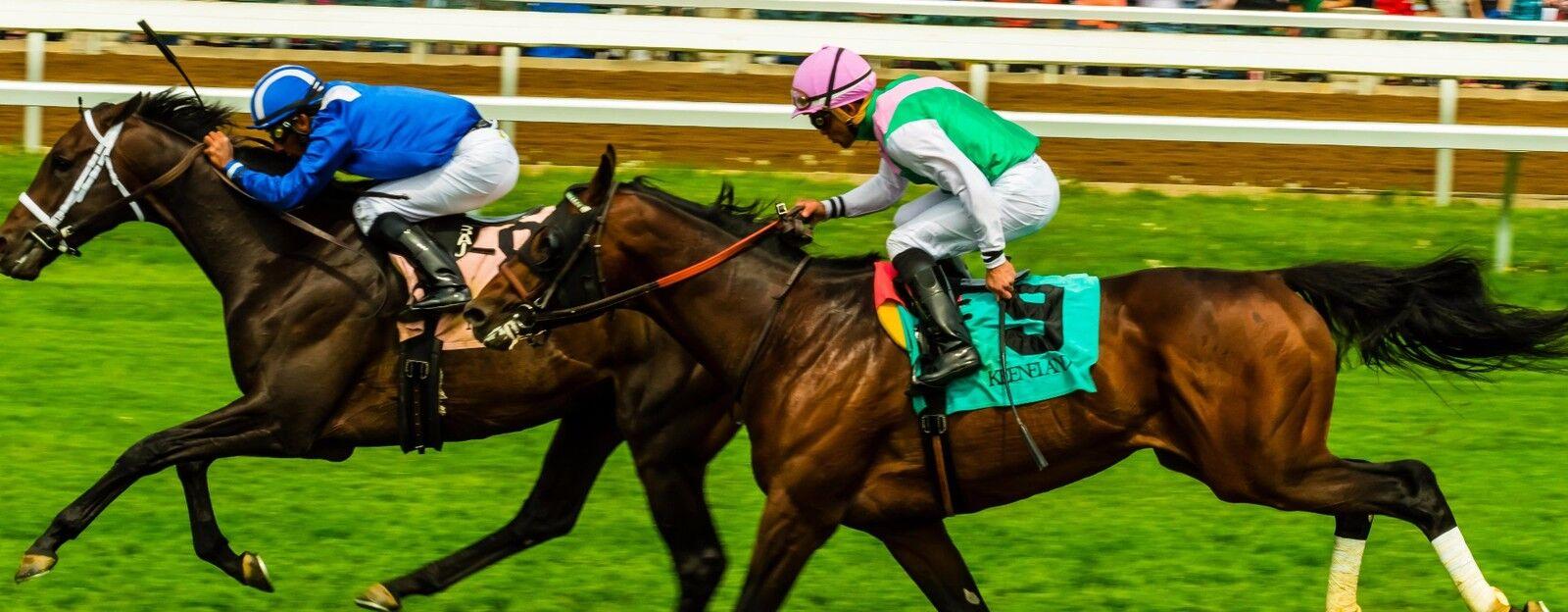 horse racing trivia uk