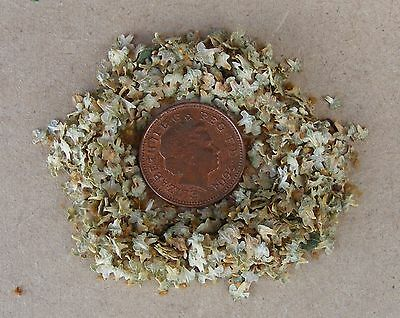 1:12 Scale 1 Gram Packet Of Dolls House Miniature Spring Leaves Garden Accessory