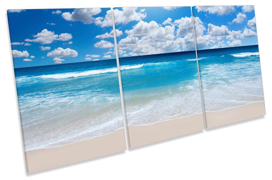 SUNSET SPIAGGIA SABBIOSA FLORA TREBLE TELA parete arte foto stampa