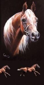 039-Hassan-039-Chestnet-Arabian-Horse-blank-greetings-birthday-card-Caroline-Cook