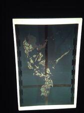 "Nancy Chunn ""Philippines: Guns, Goons Gold 1987"" Modern Art 35mm Slide"