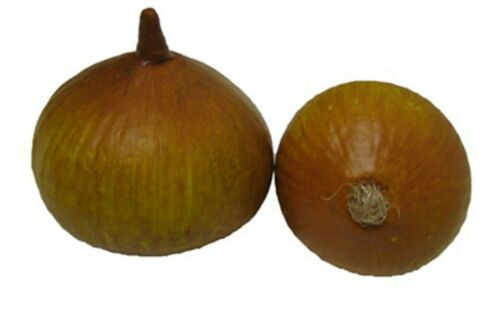 Artificial Natural Onion Pair Large And Small Fake Onion