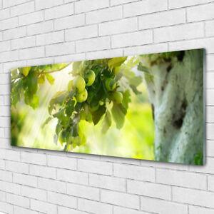 Details zu Glasbilder Wandbild Druck auf Glas 125x50 Zweig Äpfel Küche