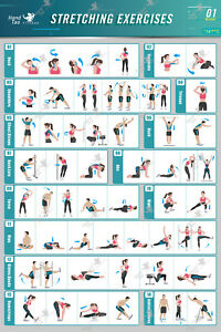 stretching exercise poster bodybuilding guide fitness gym