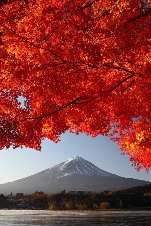 Mount Fuji Japan Home Decor Canvas Print, choose your Größe.