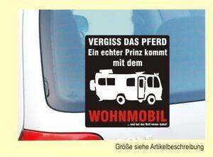 Details Zu Aufkleber Wohnmobil Camper Vergiss Den Gaul Ein Echter Prinz Nr 7785