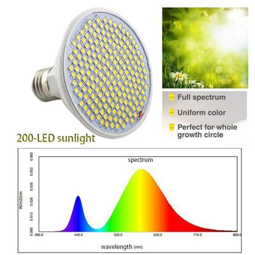 Full Spectrum phytolamp 200 LED plant Grow light vegs cultivo yellow Phyto Lamp