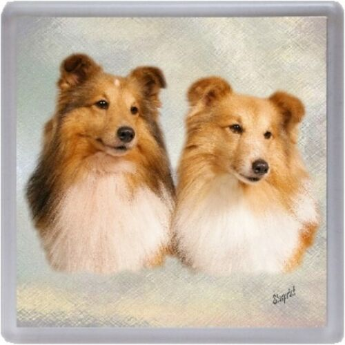 Shetland Sheepdog Sheltie Coaster No 1 by Starprint Auto combined postage