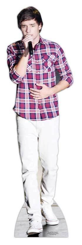 Payne, Liam LIFEGröße CARDBOARD CUTOUT STANDEE STANDUP pop star