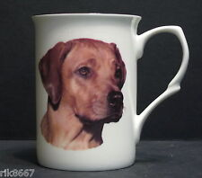 Rhodesian Ridgeback  Dog (Head BF) Fine Bone China Mug Cup Beaker