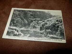 1940-039-s-real-photo-Postcard-mountain-stream-New-Zealand-men-on-horses
