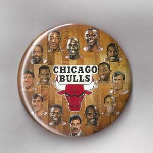 1991-Chicago-Bulls-NBA-Champs-team-photo-button-3-1-2-034-pin-Michael-Jordan-Pippen
