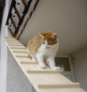 Elmato Chat Escaliers, 3 M-afficher Le Titre D'origine