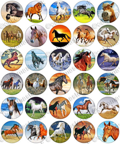 30 x Horses Fan Party Edible Rice Wafer Paper Cupcake Toppers